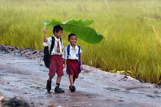 அசலும் நகலும் -படங்கள். Cog-twofriends-banana-leaf